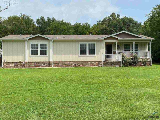 118 Pr 5453, Quitman, TX 75783 (MLS #10131967) :: The Wampler Wolf Team
