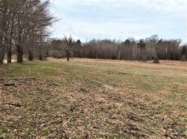 0000 County Road 3822, Athens, TX 75752 (MLS #10131969) :: The Wampler Wolf Team