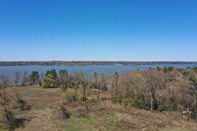 TBD LOT 60 South Shores, Pittsburg, TX 75686 (MLS #10132715) :: Griffin Real Estate Group