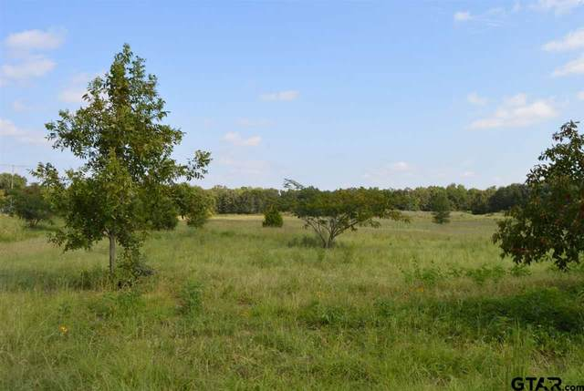 0 Fm 515 & Cr 1515, Alba, TX 75410 (MLS #10132854) :: RE/MAX Professionals - The Burks Team