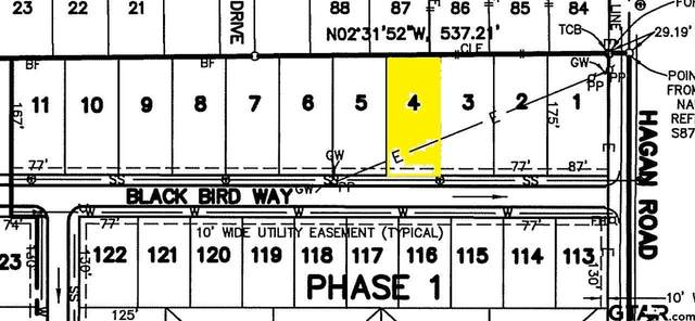 806 Blackbird Way, Whitehouse, TX 75791 (MLS #10133249) :: RE/MAX Professionals - The Burks Team