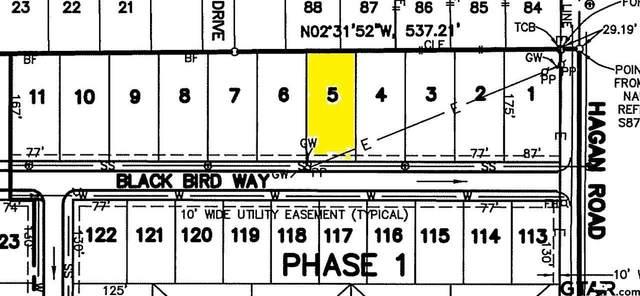 808 Blackbird Way, Whitehouse, TX 75791 (MLS #10133251) :: RE/MAX Professionals - The Burks Team