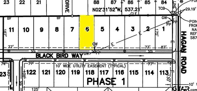 810 Blackbird Way, Whitehouse, TX 75791 (MLS #10133252) :: RE/MAX Professionals - The Burks Team