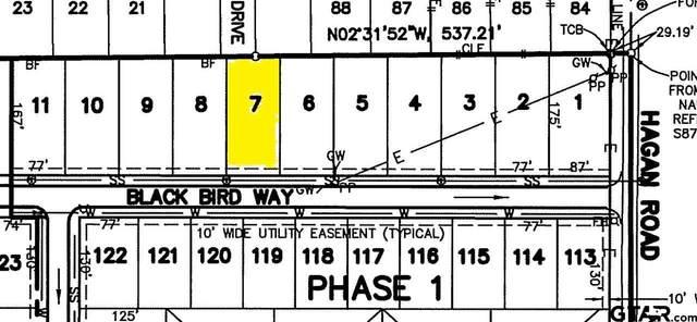 812 Blackbird Way, Whitehouse, TX 75791 (MLS #10133254) :: RE/MAX Professionals - The Burks Team