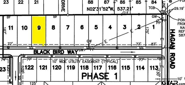 816 Blackbird Way, Whitehouse, TX 75791 (MLS #10133257) :: RE/MAX Professionals - The Burks Team