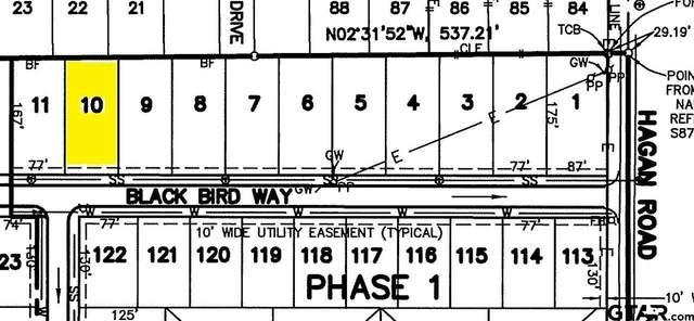 818 Blackbird Way, Whitehouse, TX 75791 (MLS #10133259) :: RE/MAX Professionals - The Burks Team