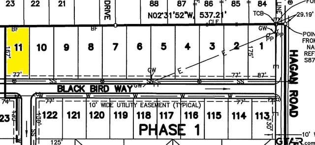 900 Blackbird Way, Whitehouse, TX 75791 (MLS #10133260) :: RE/MAX Professionals - The Burks Team