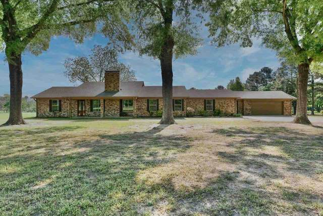 20072 Cr 4126, Lindale, TX 75771 (MLS #10133447) :: RE/MAX Professionals - The Burks Team