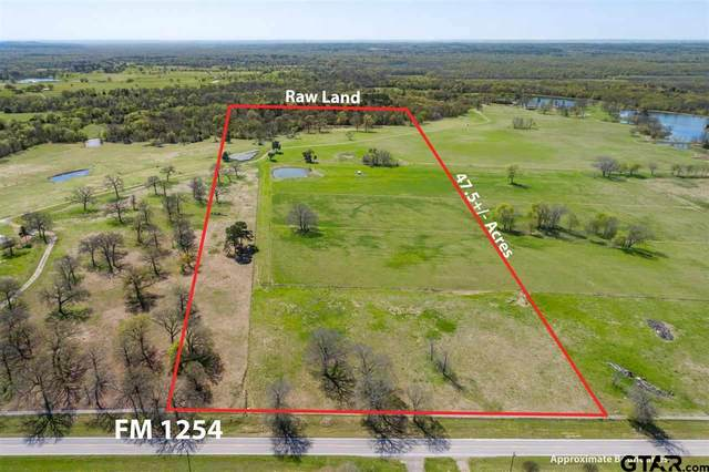 TBD Fm 1254, Mineola, TX 75773 (MLS #10133480) :: Griffin Real Estate Group