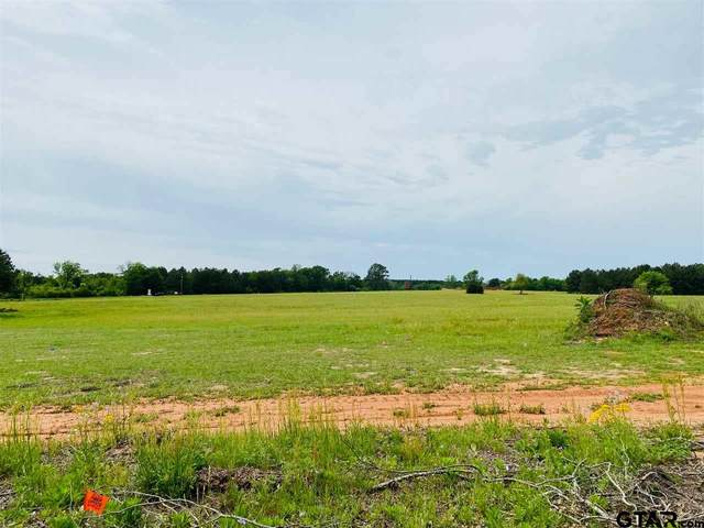 16769 Cr 3224, Winona, TX 75792 (MLS #10133553) :: The Edwards Team Realtors