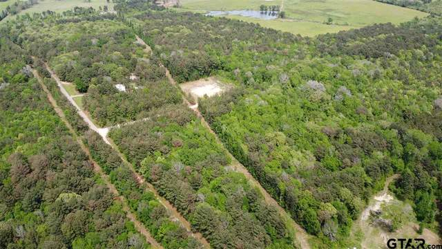 TBD Cr 2160, Troup, TX 75789 (MLS #10134050) :: Realty ONE Group Rose