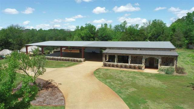 8572 County Road 1161, Tyler, TX 75703 (MLS #10134147) :: The Edwards Team