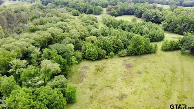 TBD Cr 481, Lindale, TX 75771 (MLS #10134562) :: The Edwards Team