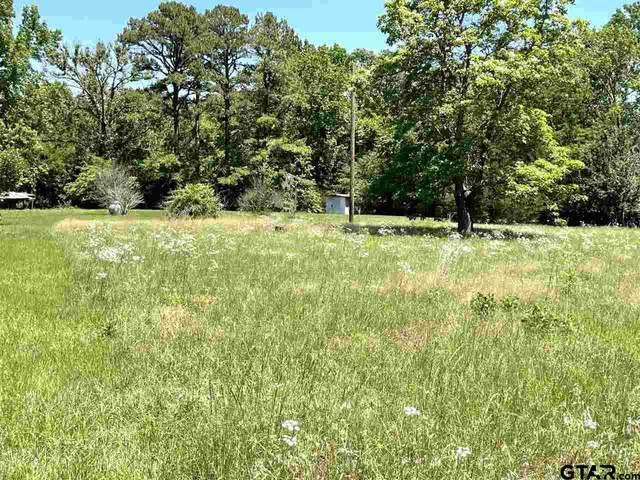 20965 Cr 450, Lindale, TX 75771 (MLS #10134865) :: The Edwards Team