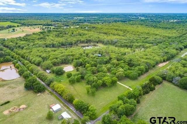 1995 County Road 3117, Edgewood, TX 75117 (MLS #10135091) :: Griffin Real Estate Group