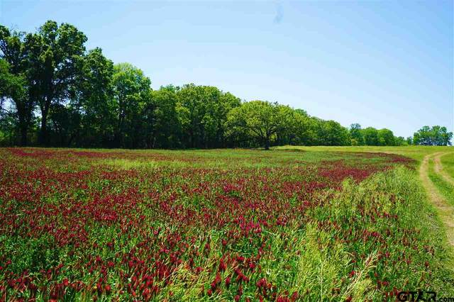 TBD Vz County Road 3507, Edgewood, TX 75117 (MLS #10135158) :: Griffin Real Estate Group