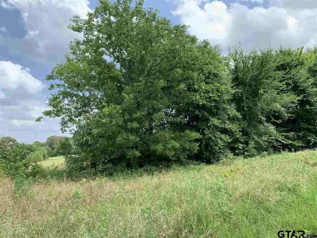 18593 (Lot 6) Cr 139 (Burkett Road), Flint, TX 75762 (MLS #10135900) :: Griffin Real Estate Group