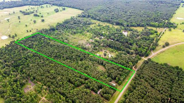 12044 Fm 2274, Troup, TX 75789 (MLS #10135909) :: Griffin Real Estate Group
