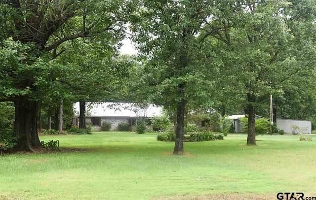 288 County Road 1858, Yantis, TX 75497 (MLS #10135964) :: The Edwards Team