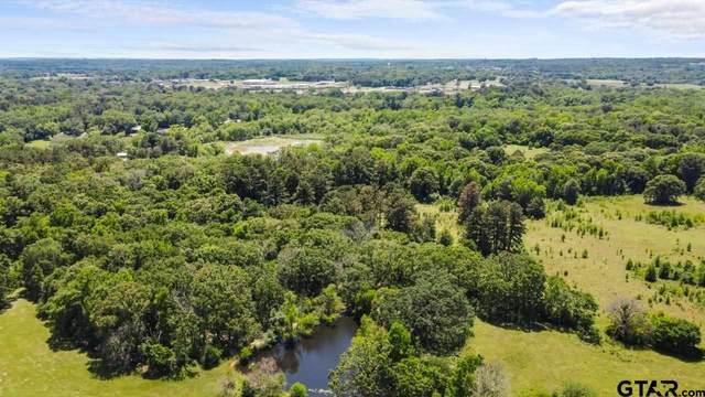 TBD 6 acres W Peninsula Rd, Whitehouse, TX 75791 (MLS #10135991) :: Griffin Real Estate Group