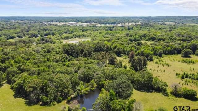 TBD 19 Acres W Peninsula Rd, Whitehouse, TX 75791 (MLS #10135992) :: Griffin Real Estate Group