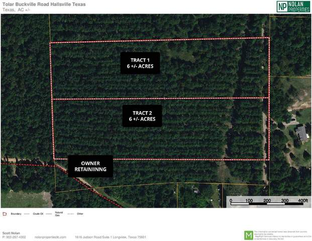 TBD Buckville Road, Tract 1, Hallsville, TX 75650 (MLS #10136091) :: Griffin Real Estate Group