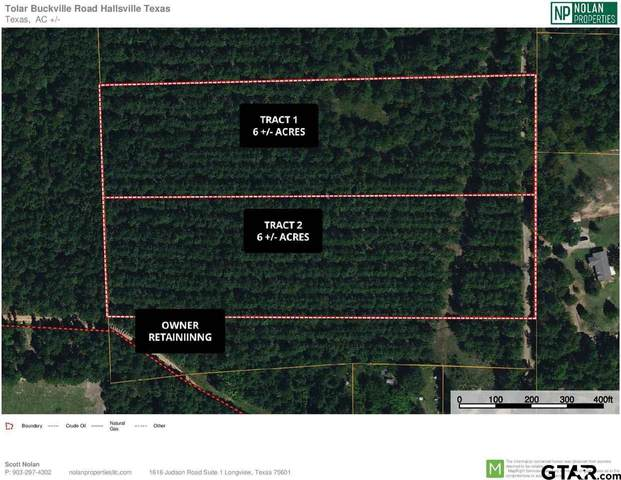 TBD Buckville Road, Tract 2, Hallsville, TX 75650 (MLS #10136093) :: Griffin Real Estate Group