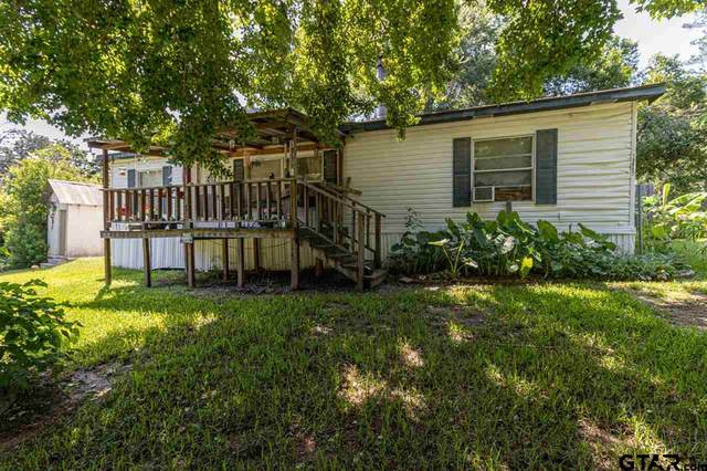 19997 Channel View Dr, Flint, TX 75762 (MLS #10136169) :: The Edwards Team