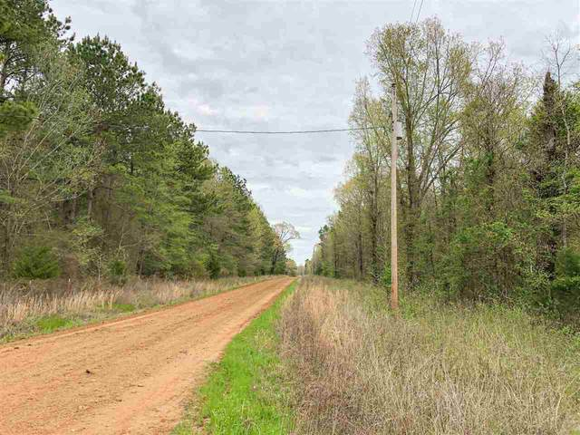 00 Cr 4507, Simms, TX 75574 (MLS #10136202) :: Realty ONE Group Rose