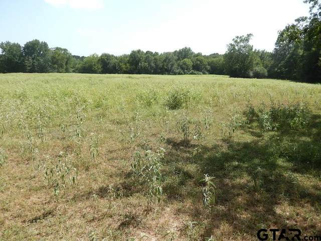 24670 E St Hwy 64, Troup, TX 75789 (MLS #10136269) :: The Edwards Team