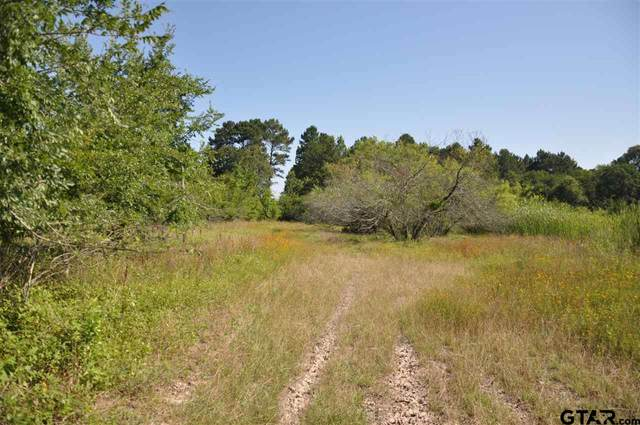 000 County Road 335, Neches, TX 75779 (MLS #10136276) :: The Edwards Team