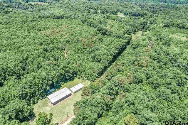 0 County Rd 2065, Crockett, TX 75835 (MLS #10136314) :: Realty ONE Group Rose