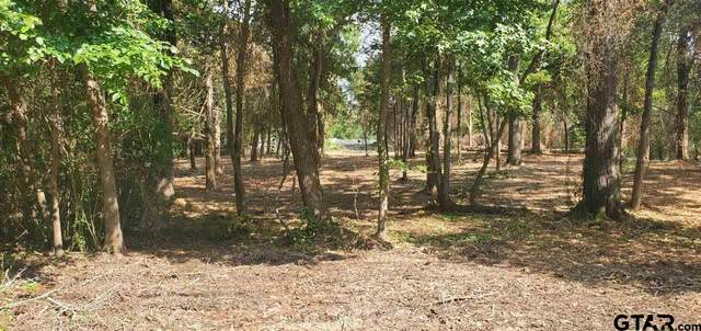 Lot 41 Rosemary Dr, Quitman, TX 75783 (MLS #10136492) :: Realty ONE Group Rose