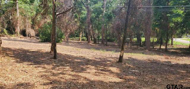 Lot 40 Lance, Quitman, TX 75783 (MLS #10136495) :: Realty ONE Group Rose