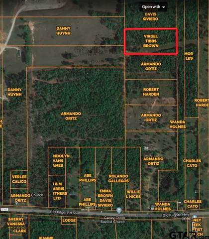 21557 Fm 2767, Winona, TX 75792 (MLS #10137085) :: Griffin Real Estate Group