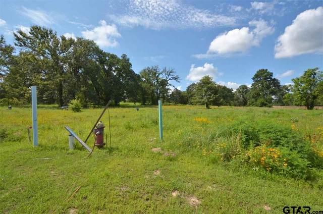 14684 Gracie Lane, Brownsboro, TX 75756 (MLS #10137186) :: Wood Real Estate Group