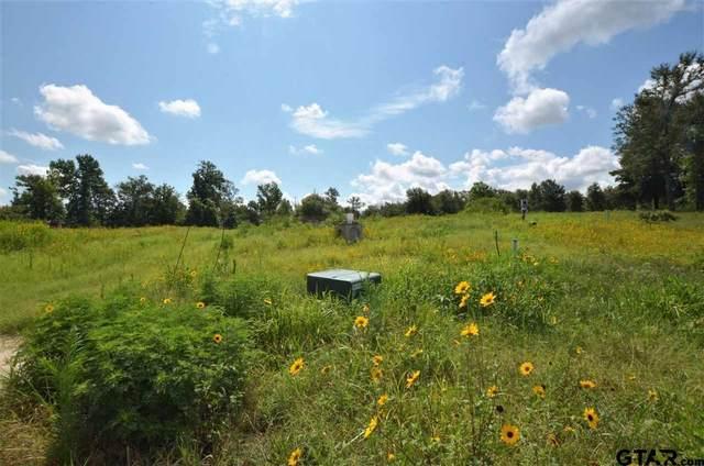 14689 Gracie Lane, Brownsboro, TX 75756 (MLS #10137211) :: Wood Real Estate Group