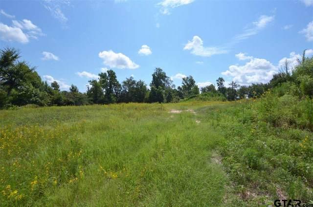 14683 Gracie Lane, Brownsboro, TX 75756 (MLS #10137213) :: Wood Real Estate Group