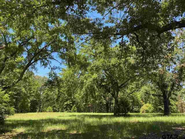817 Hackberry, Gilmer, TX 75644 (MLS #10137232) :: Griffin Real Estate Group
