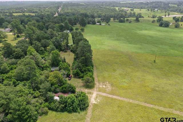 11280 E State Highway 294, Grapeland, TX 75844 (MLS #10137451) :: Wood Real Estate Group