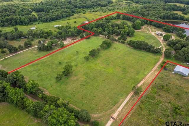 12851 Cr 3520, Brownsboro, TX 75756 (MLS #10137508) :: Wood Real Estate Group