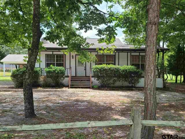 253 Pagosa Lane, Holly Lake Ranch, TX 75765 (MLS #10137554) :: Wood Real Estate Group