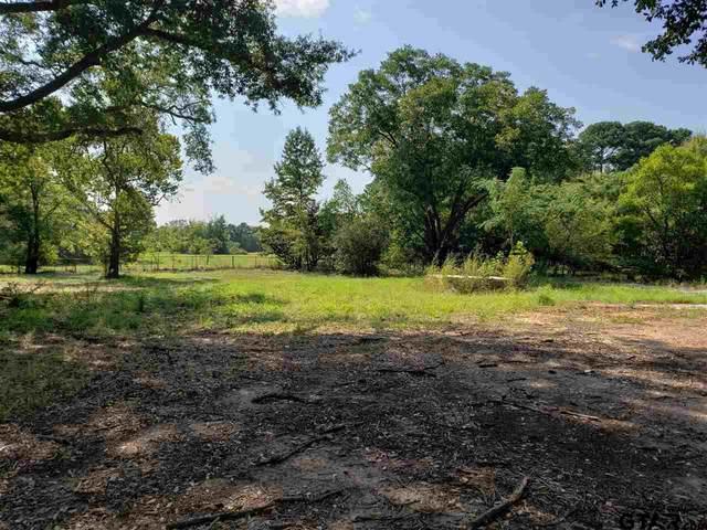 1137 Kings Lane, Mineola, TX 75773 (MLS #10137684) :: Griffin Real Estate Group