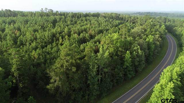 TBD Fm 726 N 29+/- Acres, Diana, TX 75640 (MLS #10137717) :: Griffin Real Estate Group