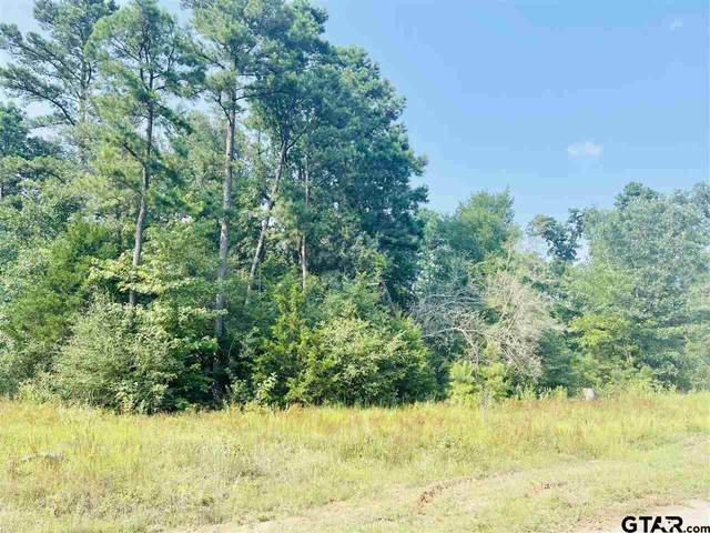 LOT 10 Cr 3545, Hawkins, TX 75765 (MLS #10137740) :: Griffin Real Estate Group