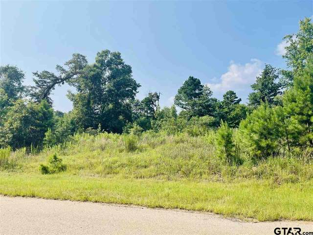 LOT 11 Cr 3545, Hawkins, TX 75765 (MLS #10137742) :: Griffin Real Estate Group