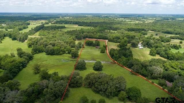 000 Fm 1255, Grand Saline, TX 75140 (MLS #10137745) :: Griffin Real Estate Group