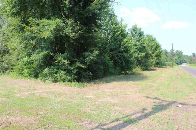 351 Cr 4450, Winnsboro, TX 75494 (MLS #10137768) :: Griffin Real Estate Group