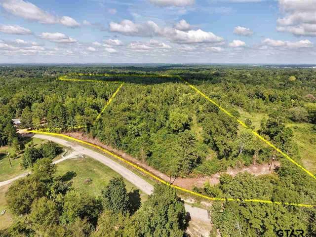 0 Cr 296E, Longview, TX 75603 (MLS #10137816) :: Griffin Real Estate Group