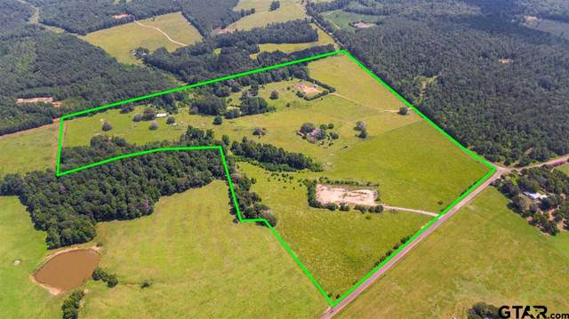 18748 Cr 258, Troup, TX 75789 (MLS #10137856) :: Griffin Real Estate Group